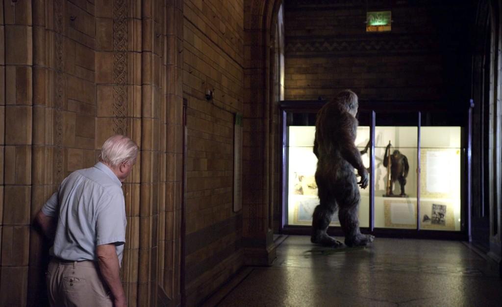 "Кадр из фильма ""Музей естествознания с Дэвидом Аттенборо"""