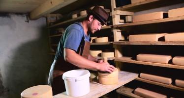 В мае 2018 года состоится премьера документального фильма о первом в России сыре